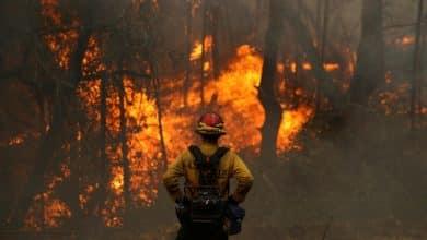 صورة اشتعال حرائق الغابات في كاليفورنيا 4 ملايين فدان وتسجيل رقم قياسي جديد